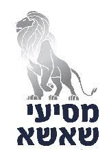 """מסיעי אריה שאשא בע""""מ"""